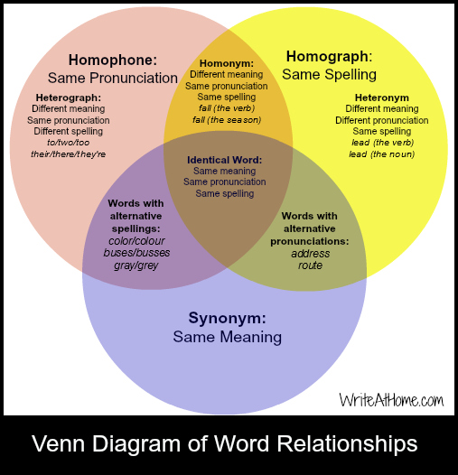 Venn Diagram of Word Relationships