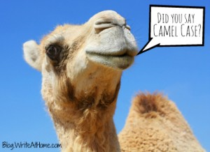 Camel speaking