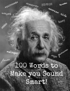 100 words to make you sound smart pdf free download