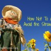 How Not To Argue: Avoid the Straw Man